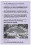 ARC Annual report 040113