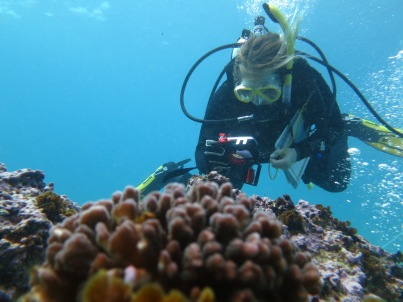 Chenae photographing corals