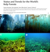 Status and trends for the worlds kelp forests